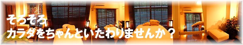 恵比寿で整体・マッサージをお探しの方へ【整体・ボディワークサロンebice】中目黒・目黒・広尾・代官山・渋谷